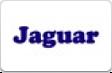 Все товары фирмы Ягуар